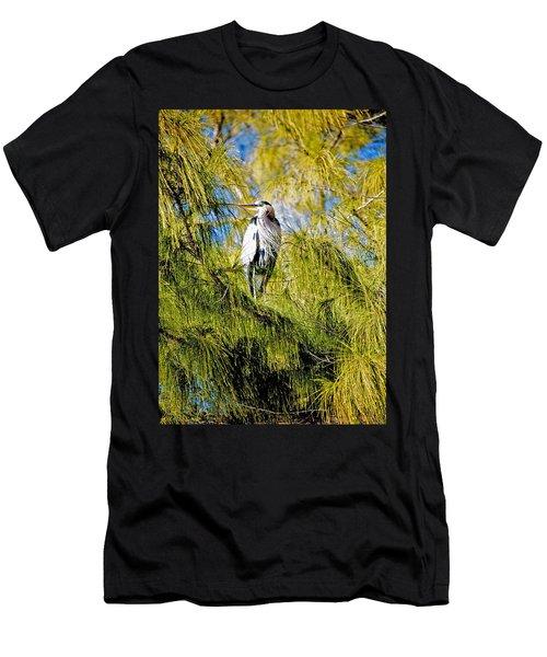 The Heron's Whiskers Men's T-Shirt (Athletic Fit)