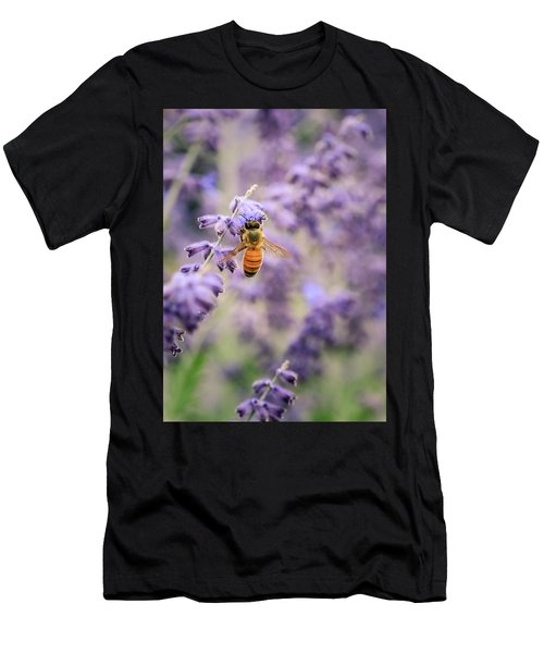 The Honey Bee And The Lavender Men's T-Shirt (Athletic Fit)