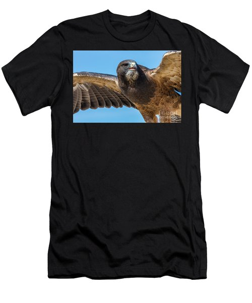 The Kill Wildlife Art By Kaylyn Franks Men's T-Shirt (Athletic Fit)
