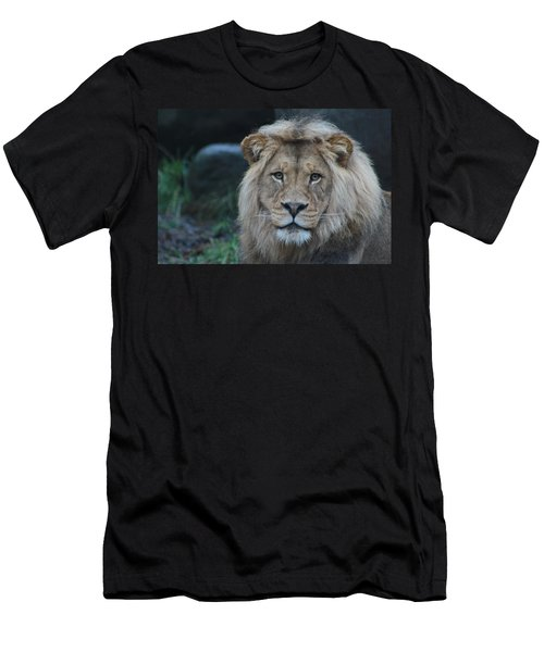 Men's T-Shirt (Slim Fit) featuring the photograph The King by Laddie Halupa