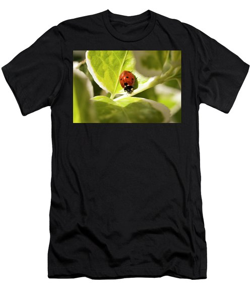The Ladybug  Men's T-Shirt (Athletic Fit)
