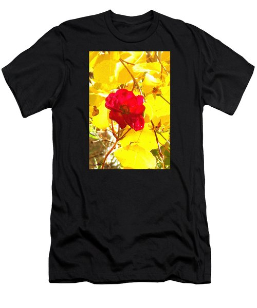The Last Rose Of Autumn Men's T-Shirt (Athletic Fit)