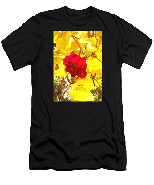 The Last Rose Of Autumn II Men's T-Shirt (Athletic Fit)