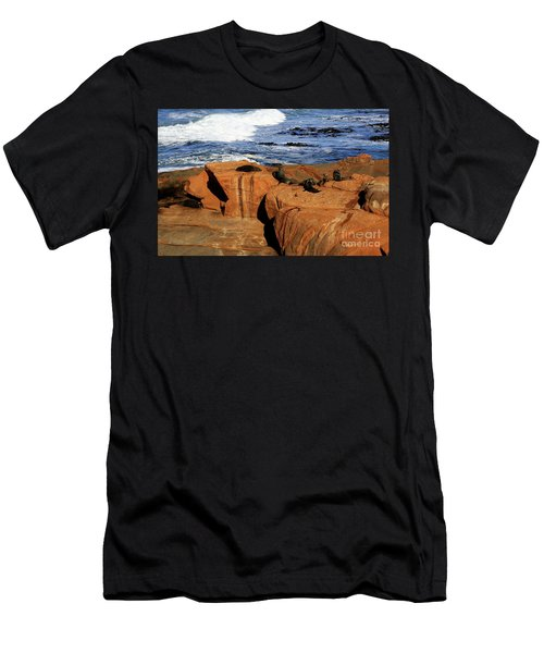 The Lazy Lounging Seals Men's T-Shirt (Athletic Fit)