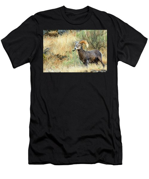 The Loner II Men's T-Shirt (Athletic Fit)
