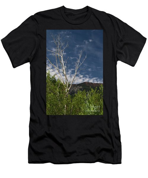 The Lonely Aspen  Men's T-Shirt (Athletic Fit)