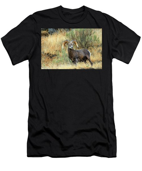 The Loner Men's T-Shirt (Athletic Fit)