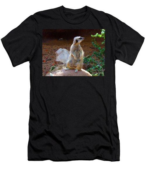 The Lookout - Meerkat Men's T-Shirt (Athletic Fit)