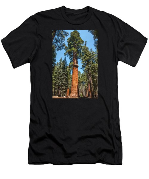 The Mckinley Giant Sequoia Tree Sequoia National Park Men's T-Shirt (Athletic Fit)