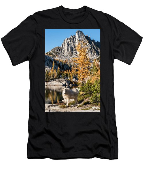 The Mountain Goat In The Enchantments Men's T-Shirt (Athletic Fit)