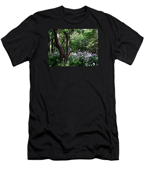 The Old Apple Tree, Fiddlehead Ferns And Wild Phlox Men's T-Shirt (Athletic Fit)
