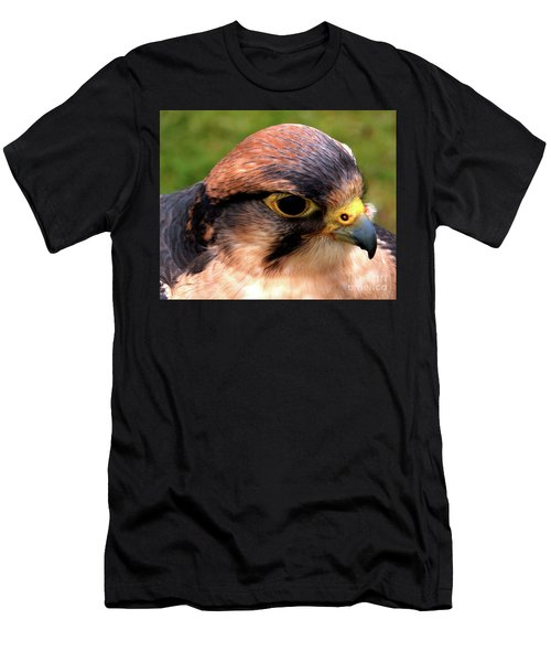 The Peregrine Men's T-Shirt (Slim Fit) by Stephen Melia