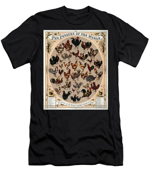 The Poultry Of The World 1868 Men's T-Shirt (Athletic Fit)