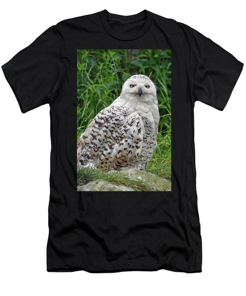The Professor Men's T-Shirt (Athletic Fit)