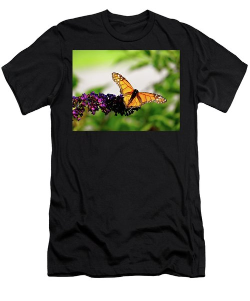 The Resting Monarch Men's T-Shirt (Athletic Fit)