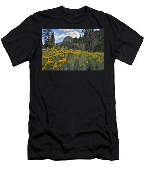 The Road To Mt. Charleston Natural Area Men's T-Shirt (Athletic Fit)