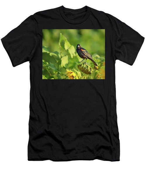 The Seed Head - Red-winged Blackbird Men's T-Shirt (Athletic Fit)