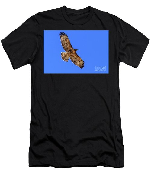 The Soaring Red Tail Hawk Men's T-Shirt (Athletic Fit)