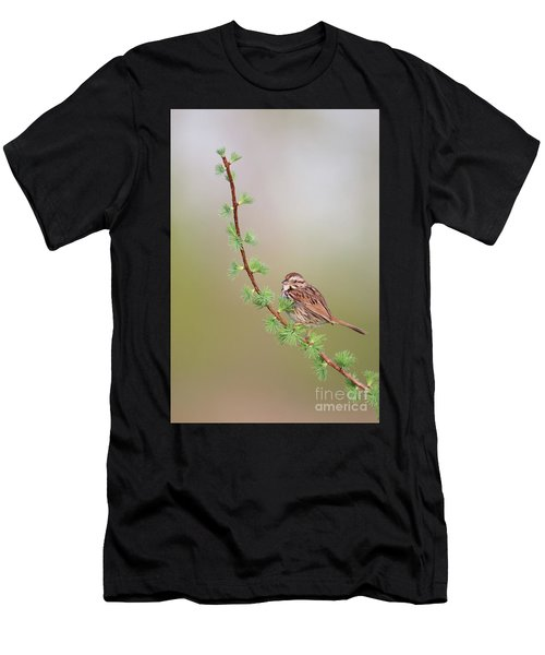 The Spring. Men's T-Shirt (Athletic Fit)