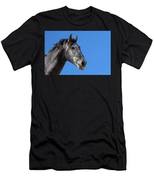The Stallion Men's T-Shirt (Athletic Fit)