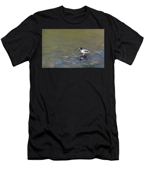 The Standing Duck Men's T-Shirt (Athletic Fit)