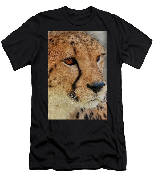 The Stare Men's T-Shirt (Athletic Fit)