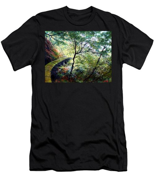 The Stone Wall Men's T-Shirt (Athletic Fit)