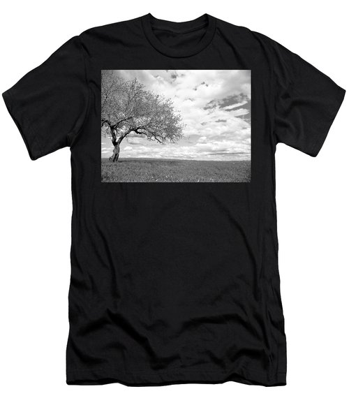 The Tree On The Hill Men's T-Shirt (Athletic Fit)