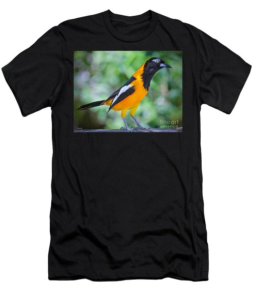 The Troupial Men's T-Shirt (Slim Fit) by Judy Kay