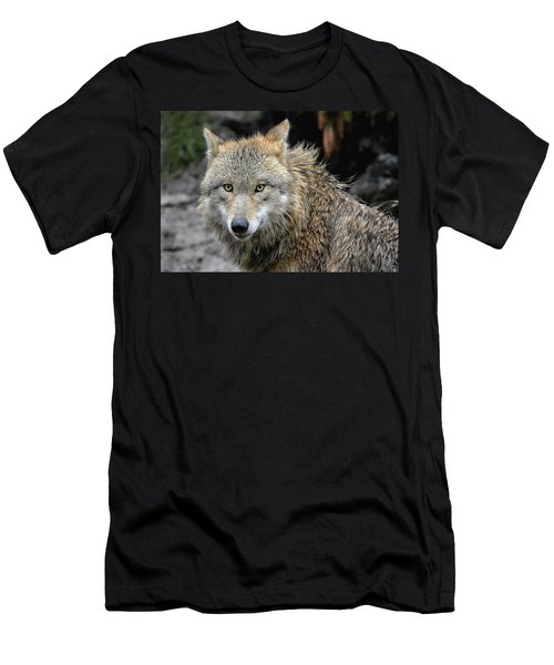 The Wolfess Men's T-Shirt (Athletic Fit)