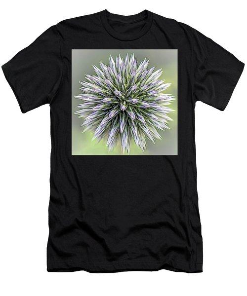 Thistle II Men's T-Shirt (Athletic Fit)