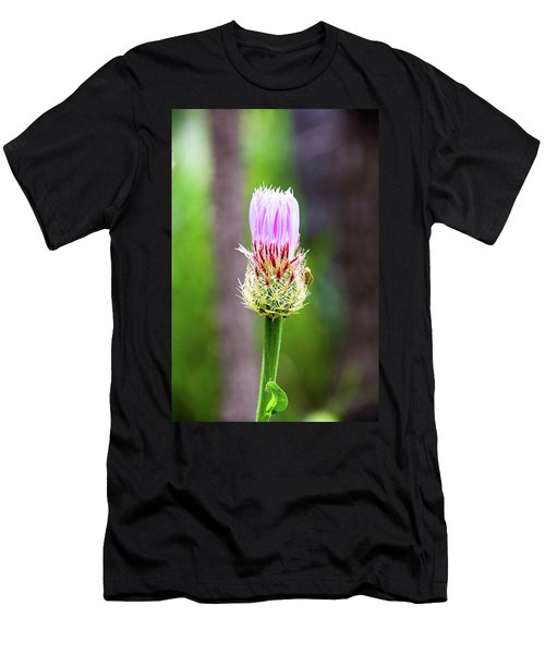 Thistle In The Canyon Men's T-Shirt (Athletic Fit)