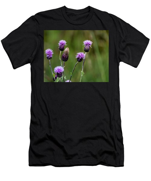 Thistles Men's T-Shirt (Athletic Fit)