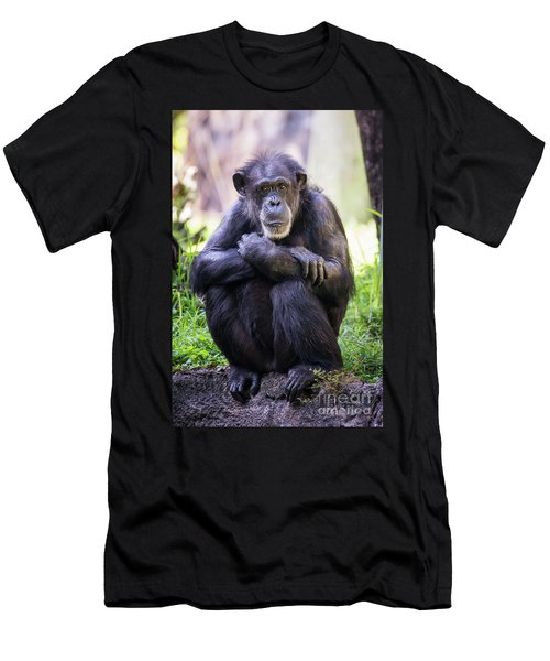 Thoughtful Chimpanzee  Men's T-Shirt (Athletic Fit)