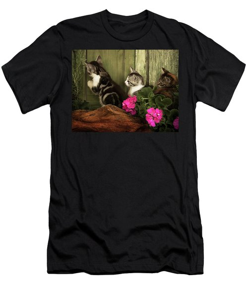 Three Cute Kittens Waiting At The Door Men's T-Shirt (Athletic Fit)