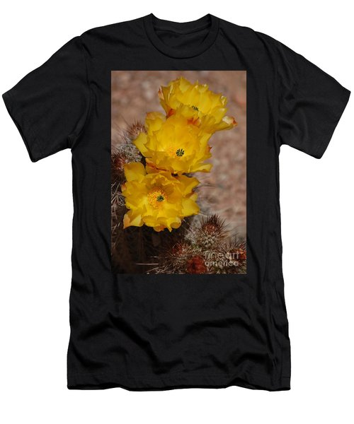 Three Yellow Cactus Flowers Men's T-Shirt (Athletic Fit)