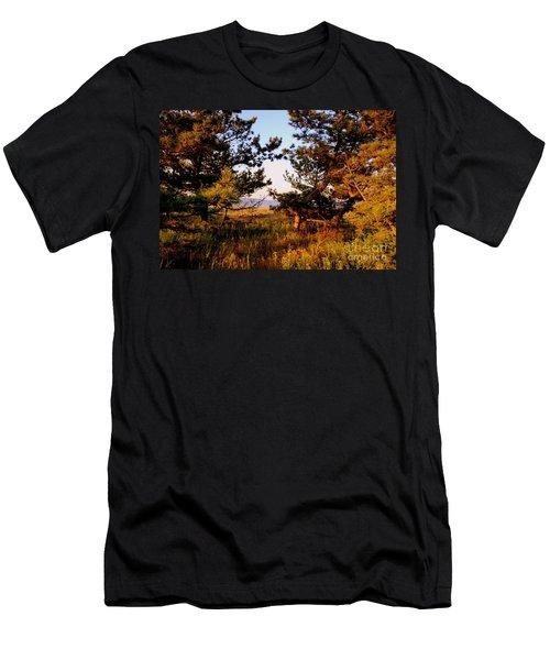Through The Pine Grove Men's T-Shirt (Athletic Fit)