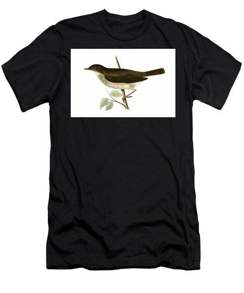 Thrush Nightingale Men's T-Shirt (Athletic Fit)