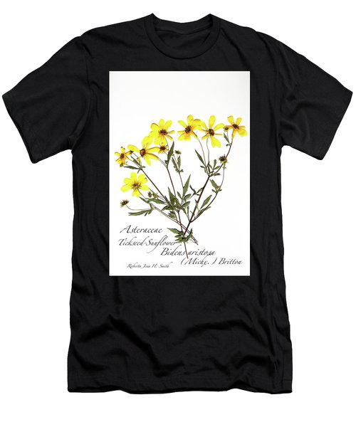 Tickseed Sunflower Men's T-Shirt (Athletic Fit)