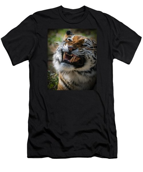 Tiger Faces 5 Men's T-Shirt (Athletic Fit)