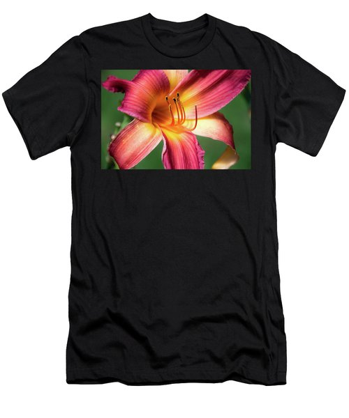 Tiger Lily Close Up Men's T-Shirt (Athletic Fit)