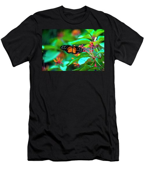 Tiger Longwing Butterfly Men's T-Shirt (Athletic Fit)