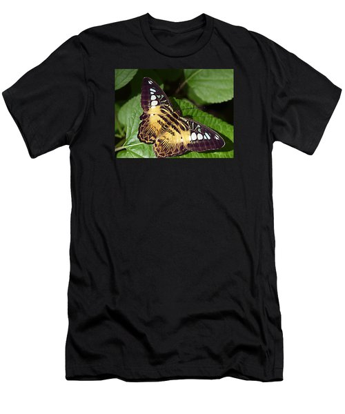 Tiger Print --- Clipper Butterfly Men's T-Shirt (Athletic Fit)