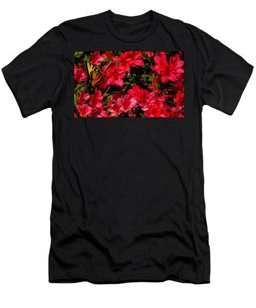 Tiger Swallowtail On A Red Azalea Men's T-Shirt (Slim Fit) by John Harding
