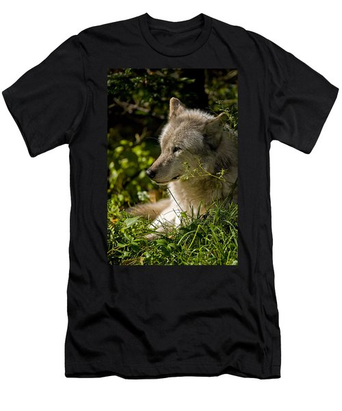 Men's T-Shirt (Slim Fit) featuring the photograph Timber Wolf Portrait by Michael Cummings