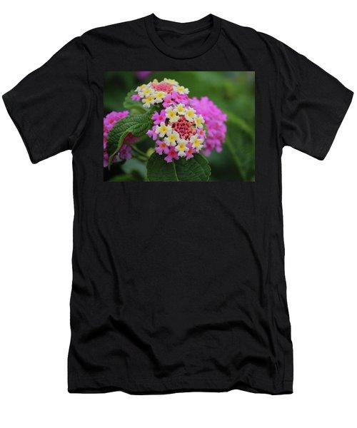 Tiny Bouquets Men's T-Shirt (Athletic Fit)