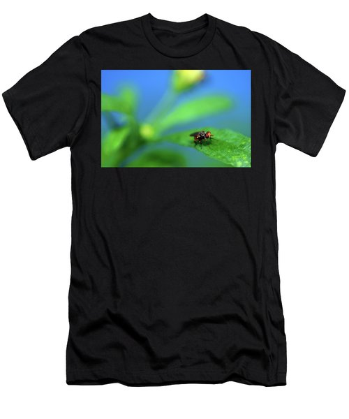 Tiny Fly On Leaf Men's T-Shirt (Athletic Fit)