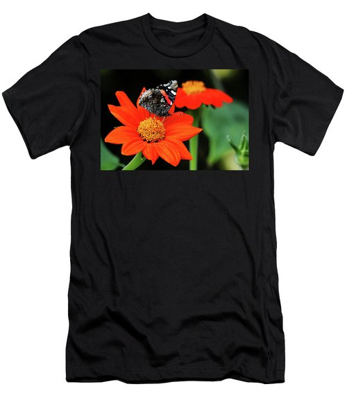 Tithonia Loving Red Admiral Men's T-Shirt (Athletic Fit)