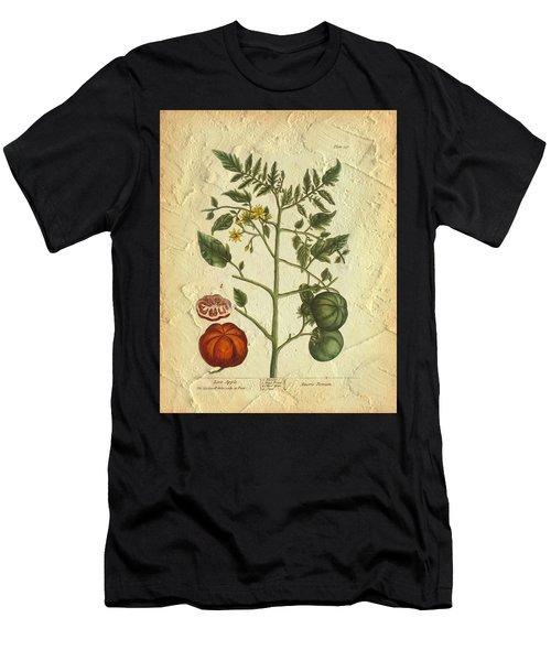 Tomato Plant Vintage Botanical Men's T-Shirt (Athletic Fit)