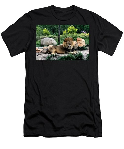 Tomo, The King Of Beasts Men's T-Shirt (Athletic Fit)